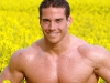 gay-muscle-sex-231178