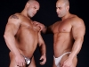 gay-muscle-xxx-771169