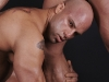 gay-muscle-xxx-771179