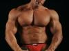 big-gay-muscle-sex-329117