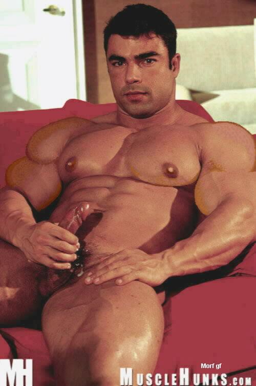 mega muscle gay