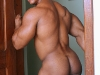 gay-muscle-xxx-11231031