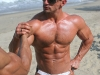 gay-muscle-sex-3121157
