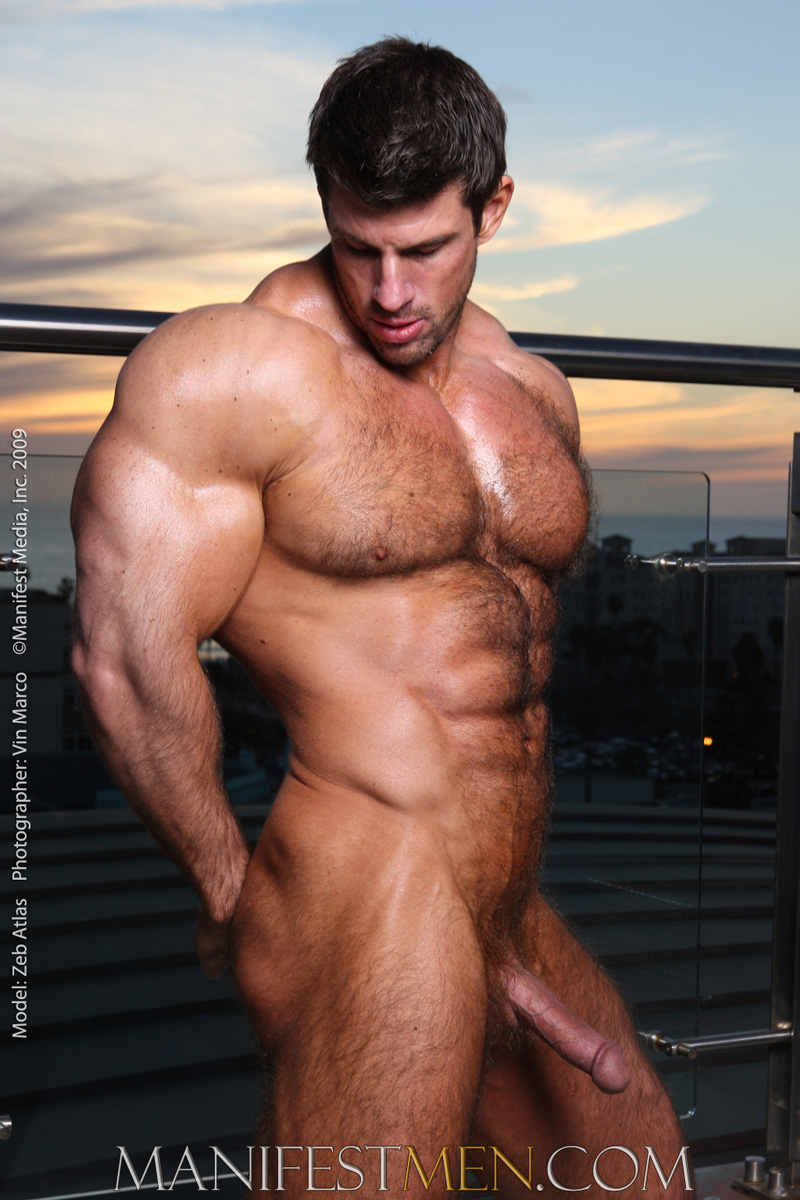 Sorry, hairy bodybuilder gallery