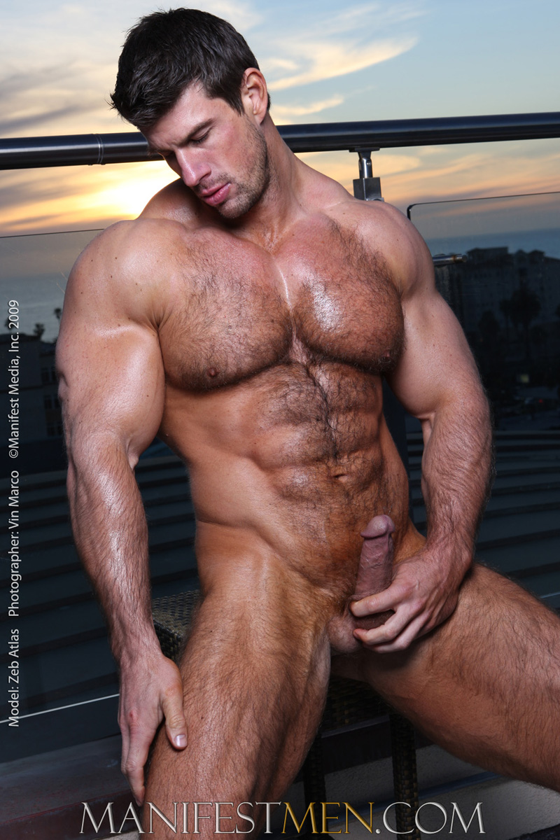 Hairy bodybuilder gallery for that