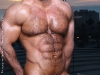 Zeb_Atlas_hairy_bodybuilder44