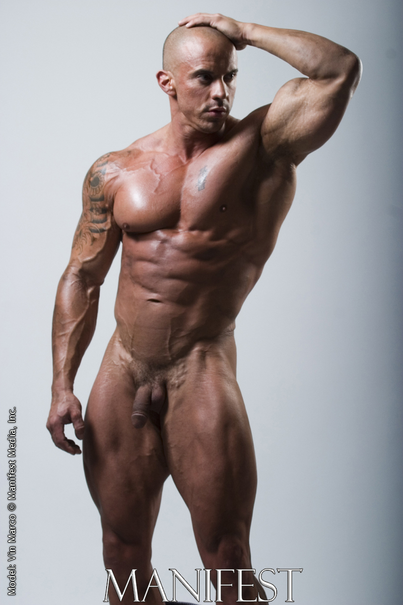 Vin Marco Huge Gay Bodybuilders The Ultimate Muscle Collection